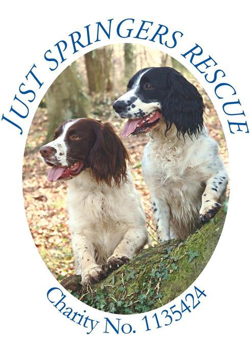 Three Counties Dog Training Sussex