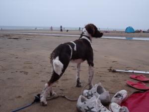 Meg at the beach