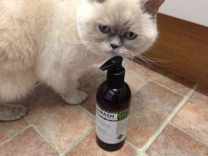 Lulu sniffing shampoo