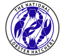 The National Lobster Hatchery