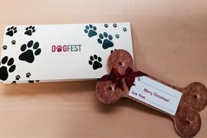 dogbone+website