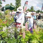 26th - 28th June 2020 - Blenheim Palace Flower Show –